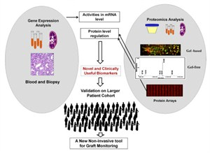 Need For Personalized Medicine -2