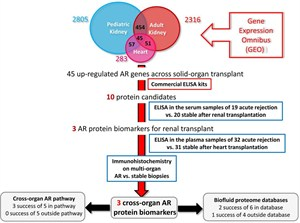 Integrated Bioinformatics In Organ Transplantation